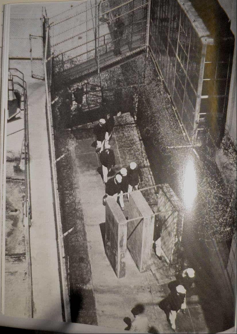 alcatraz1.jpg